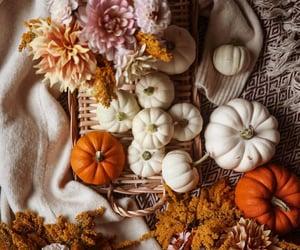 aesthetic, fashion, and Halloween image