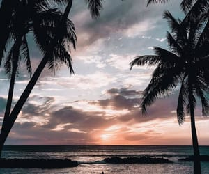 beach, lifestyle, and ocean image