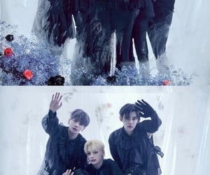 concept, freeze, and kpop image