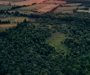 aerial photography, landscape, and aerial view image