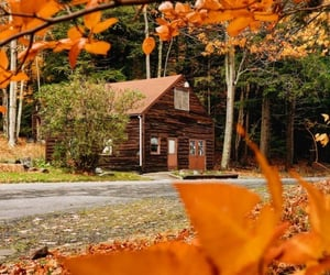 autumn, home, and cabin image