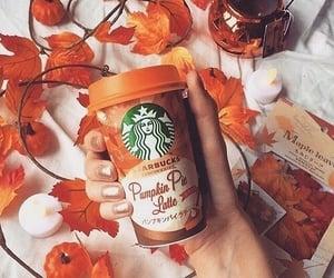 autumn, starbucks, and fall image