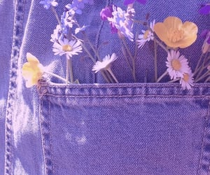aesthetic, flowers, and dreams image