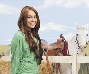 field, hannah montana, and horses image