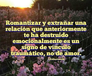 amor, quotes, and textos image