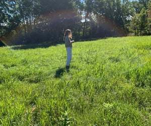 field, nature, and morning image