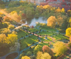 autumn, boston, and fall image