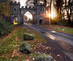 castle, stone, and woodland image