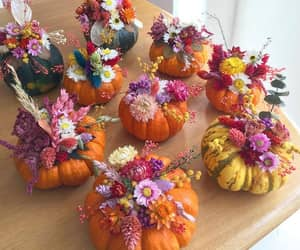 flowers and pumpkin image