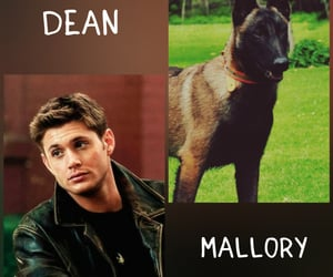 dean winchester, supernatural, and daemon image
