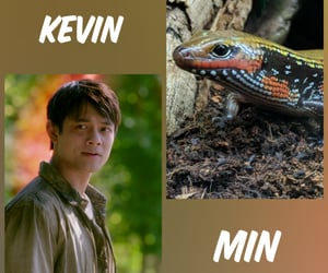 supernatural, daemon, and kevin tran image