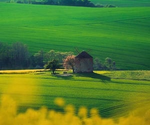 czech republic, travel, and south moravia image