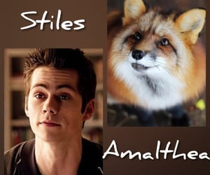 teen wolf, daemon, and tw image