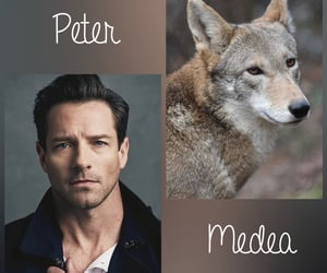 peter hale, teen wolf, and daemon image