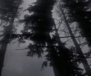 black, goth, and dark aesthetic image