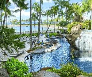 hawaii, resorts, and travel destination image