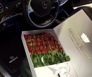 box, red rose, and roses image