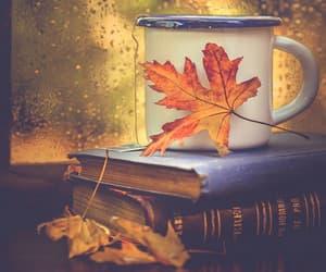 Books, tea and falling rain