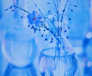 blue, cerulean, and floral image