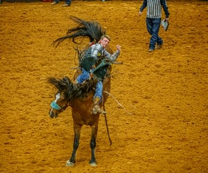cowboy, Texas, and rodeo image