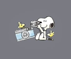 art, snoopy, and camera image
