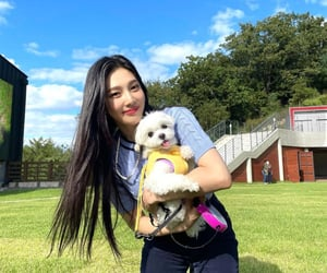 joy, park sooyoung, and red velvet image