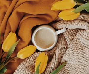 coffee, yellow, and flower image