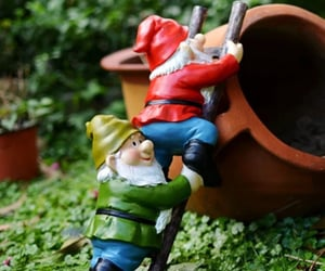gnome, shop, and gnomes for gifts image