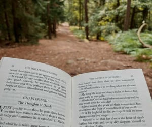 book, catholicism, and forest image