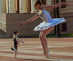 dog, girl, and pinterest image