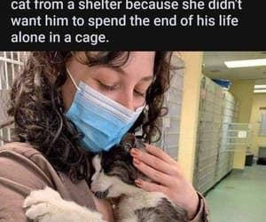 protect the innocent, fight for animal rights, and you're crying image
