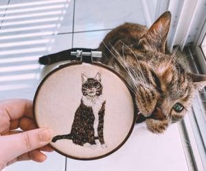 art, kitten, and pets image