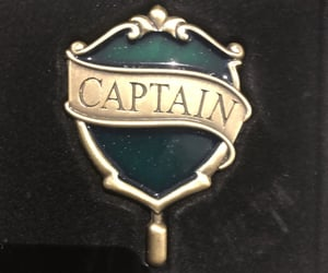 badge, quidditch, and slytherin image