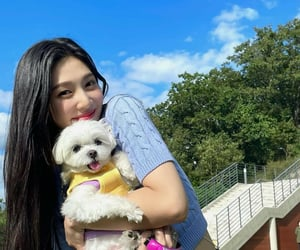 joy, kpop, and park sooyoung image