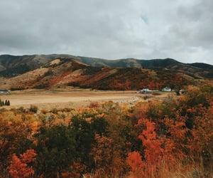Autumn vibes 🍂