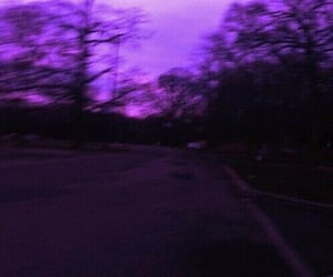 forest, purple, and purple aesthetic image