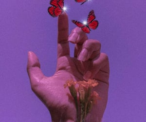 aesthetic, grain, and butterflies image