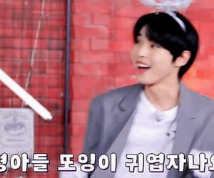 gif, doyoung, and kim doyoung image