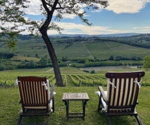 florence, summer, and vineyard image