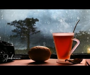 rain, relaxing sounds, and video image