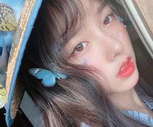 butterfly, blue, and gu yi zhou image