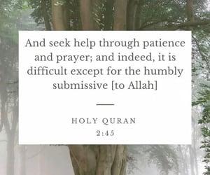 islam, islamic, and surah al-baqarah image