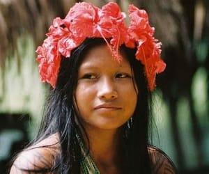 amazon south america image
