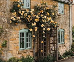 architecture, cottage garden, and charming image