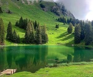 nature, green, and lake image