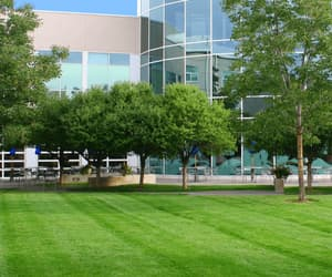 landscaping, commercial landscaping, and irrigation company image
