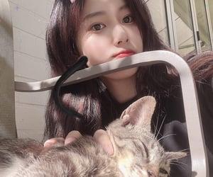 hyewon, kang hyewon, and izone image