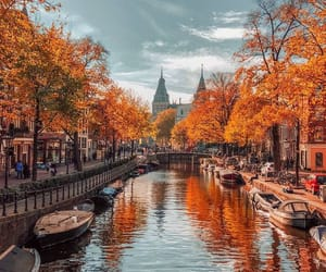 city view in autumn