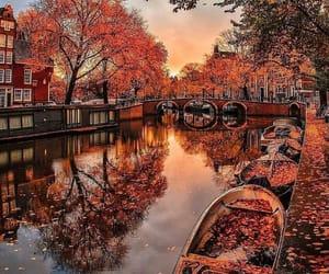 autumn, bridge, and falling leaves image