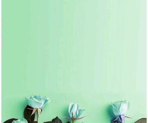 flowers, mint green, and colors image